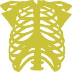 image-chest-bones